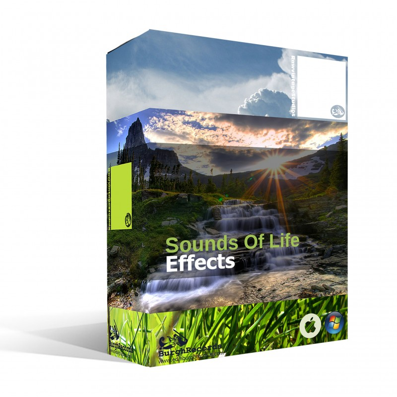 Sounds Of Life Effects