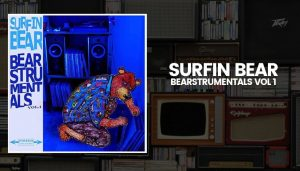 SURFIN BEAR